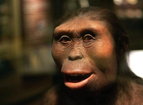 Neanderthal Extinction Caused By Herpes, Tuberculosis From Humans [Study]