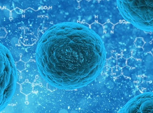 Diabetes Treatment Using Stem Cells: No More Insulin Injection