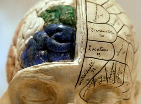 Cognitive Impairment Increases Stroke Risk, Study