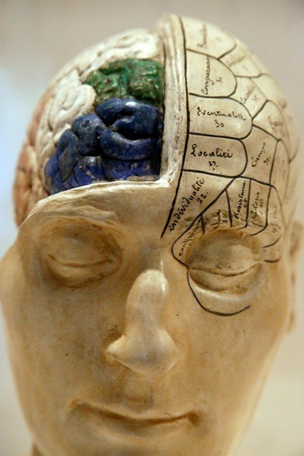 Cognitive Impairment Increases Stroke Risk, Study.