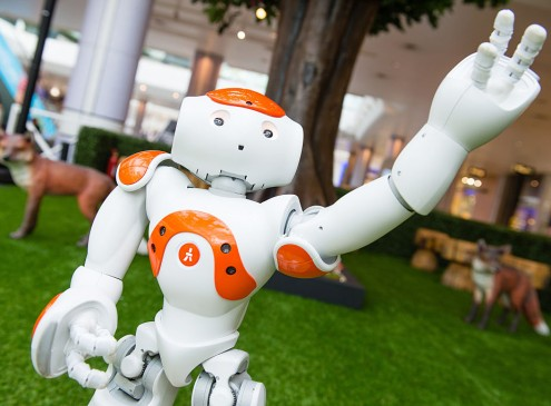 Artificial Intelligence Robot Failed Entry At University Of Tokyo
