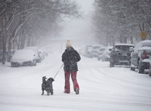 Northeast Colleges Close Due To Winter Storm Niko