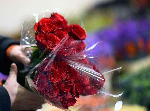Valentine's Day For Loners, What To Do On Single Awareness Day For College Students