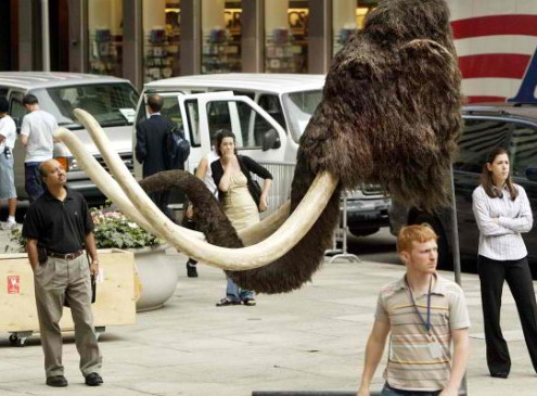 Harvard University Scientists Claim Mammoths Will Soon Be Back