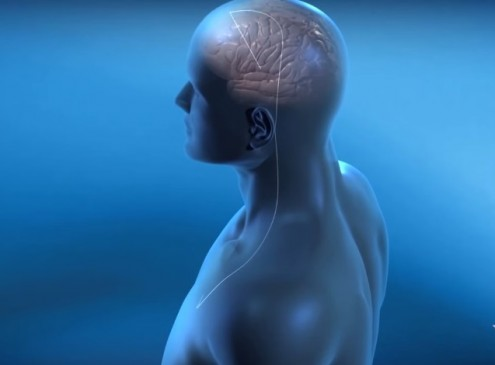 Deep Brain Stimulation For Anorexia Therapy A Possibility