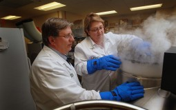 University of Minnesota researchers were able to thaw cryogenically frozen tissue without damaging it