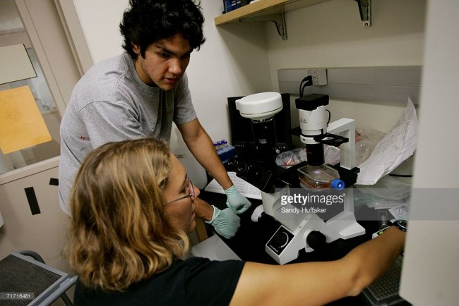 New Technique May Change Debate Over Stem Cell Research