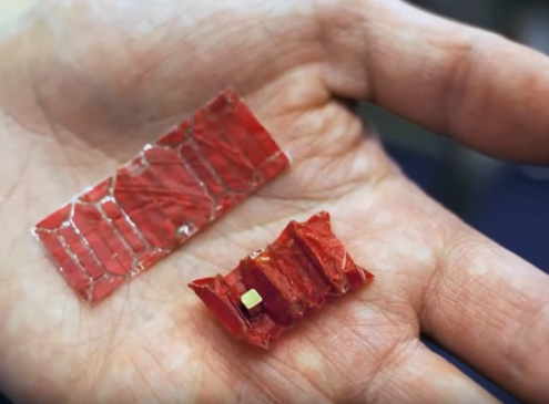 Edible Robots May Soon Work Inside Bodies To Administer Treatment Without Surgery.