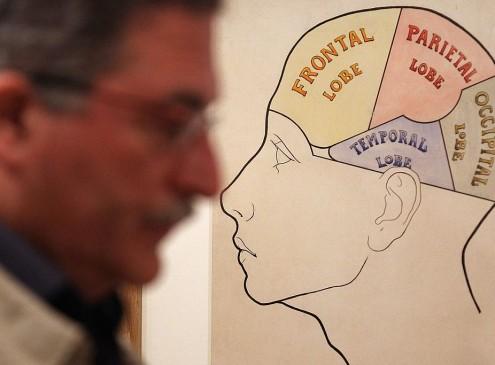 Stanford Researchers Find Cerebellum's Unknown Function