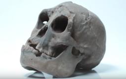 Hobbit histories: the origins of Homo floresiensis