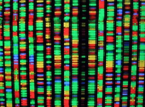 Breakthrough in DNA Repair Cellular Aging Achieved