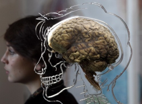 Common Knlowledge On How The Brain Form Memories May Be Wrong, Research Shows [VIDEO]