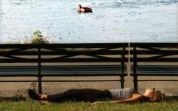 Sleep at the Park