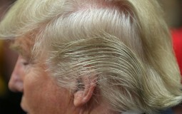 Hair Color Could be an Indicator of Cardiovascular Health