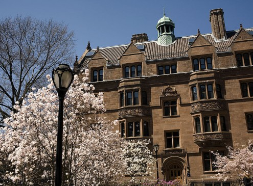 Ivy League: Here's What It Takes To Get Into These Elite Schools [Video]