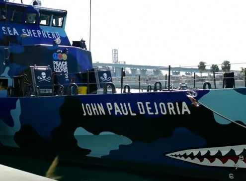 Sea Shepherd Vessel Boarded By 'Armed Forces' In Costa Rica; What Are They Up To [VIDEO]
