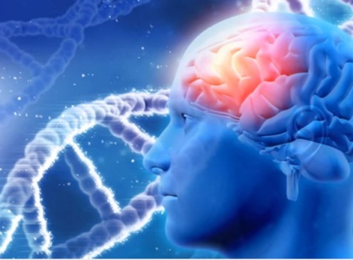 The Difficulty in Memorizing: Research Explains How The Brain Is Not For Storing Memory[VIDEO]