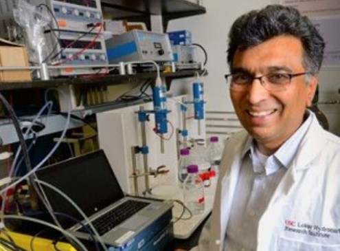 USC researchers Create Cheap Organic Batteries from Eco-Friendly Components